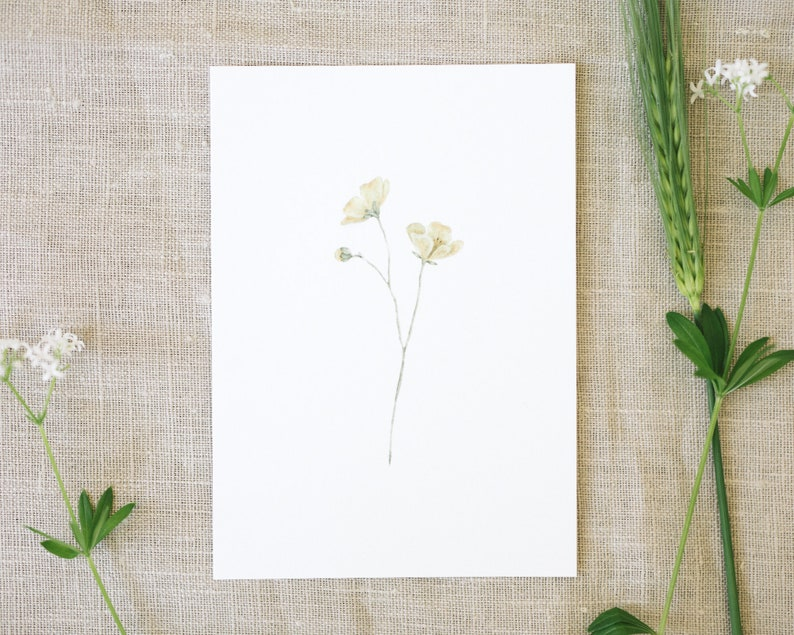 Postcard buttercup garden floral greeting card image 0