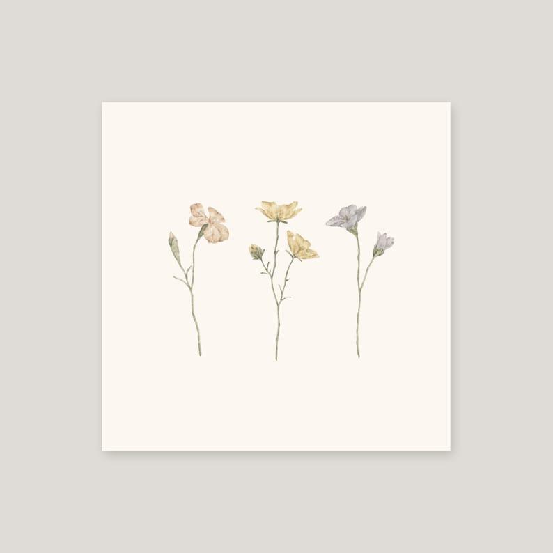 Art print botanical illustration illustrated wall decoration image 0