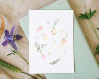 Postcard fruit & vegetables, garden, floral greeting card