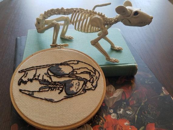 Kangaroo Rat Skull 5 Embroidery Art Illustration Skull Etsy