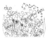 Flower Meadow 3 - Adult c...