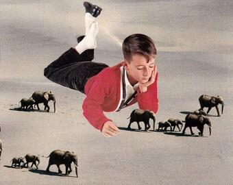 Print - Tiny Elephants Collage
