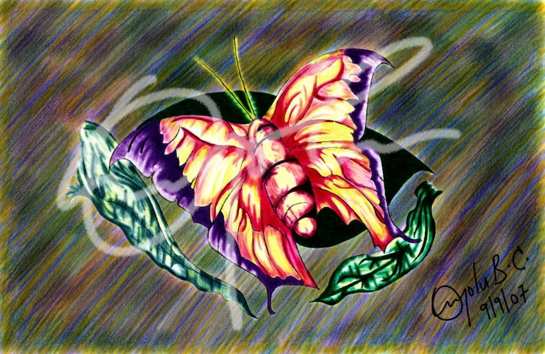 Butterfly in bright colors  Printable Download Digital image 0
