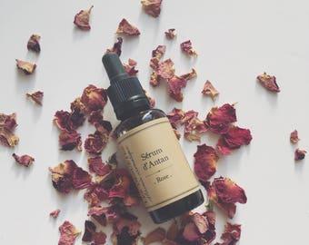 Rose of yesteryear serum
