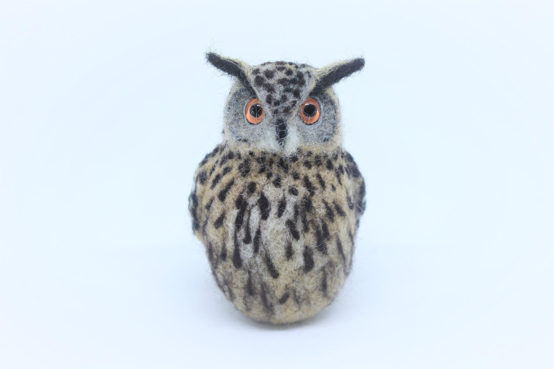 various colours 6cm tall on card for gift Cute Handmade Felt Owl brooch