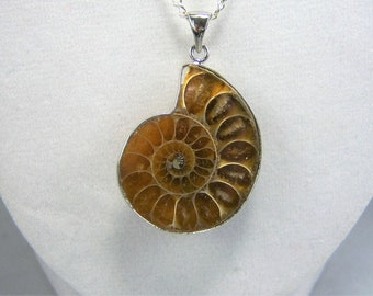 N160 - Shell Pendant Necklace
