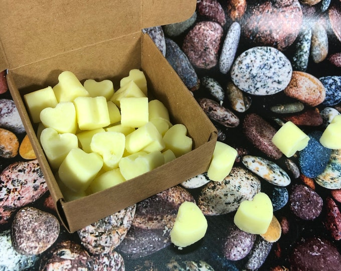 30 piccole tart antizanzare  alla citronella per bruciaessenze in cera di soia e olio essenziale allontana insetti zanzare casa giardino