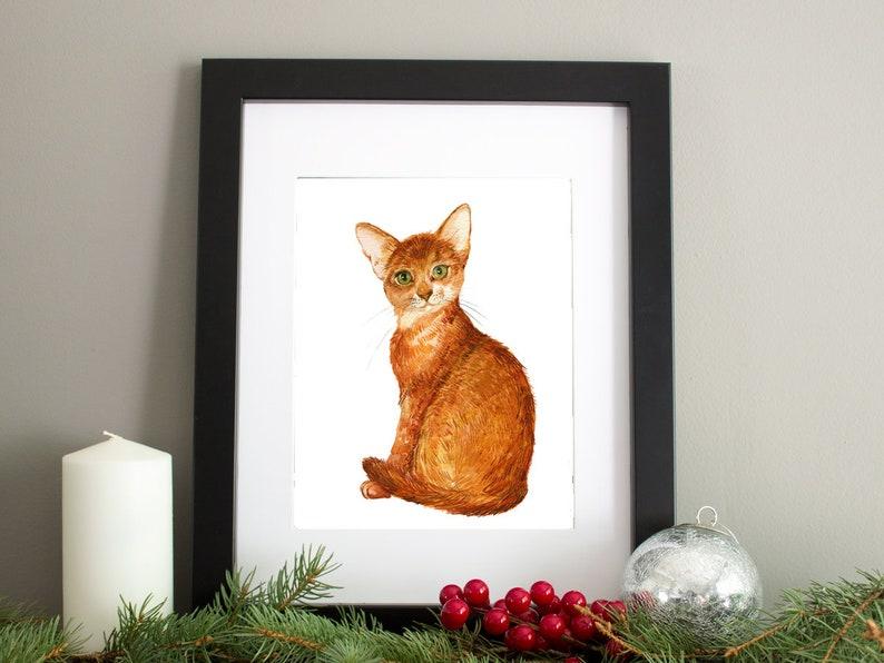 cat breeds instant download Scottish maikun Cats  Clipart Pets,digital prints Siamese