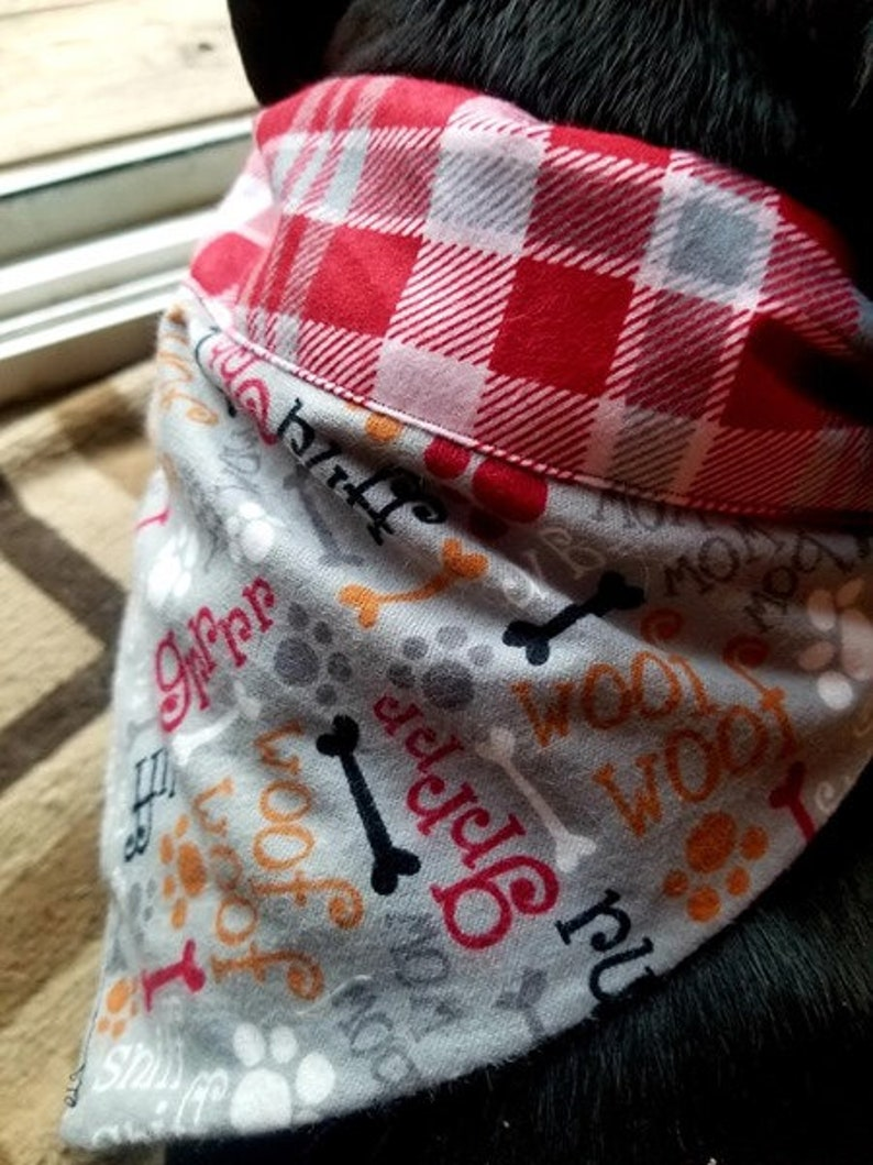 Outdoor activities with blue plaid accent over collar reversible Bandanas for Dog Collars