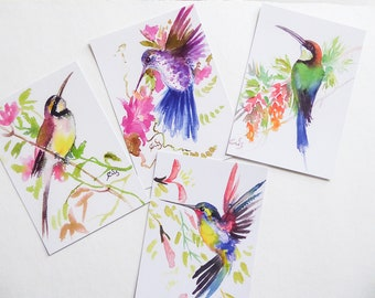 Postcards from my original watercolours Wasp and hummingbird