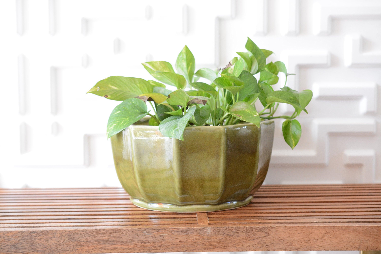 Large Midcentury Planter Avocado Green Ceramic Round Retro Vintage Succulent Indoor