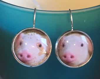 Pig cabochon earrings- 16mm