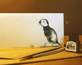 Hand-drawn puffin greeting card-Limited Edition natural world and animal art drawn in ink-105x297 mm with hand-made envelope