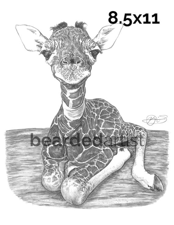 Leopard Zebra Giraffe gedruckte Tinte Schreibstift Supplies Student Schoolf Q8Y9