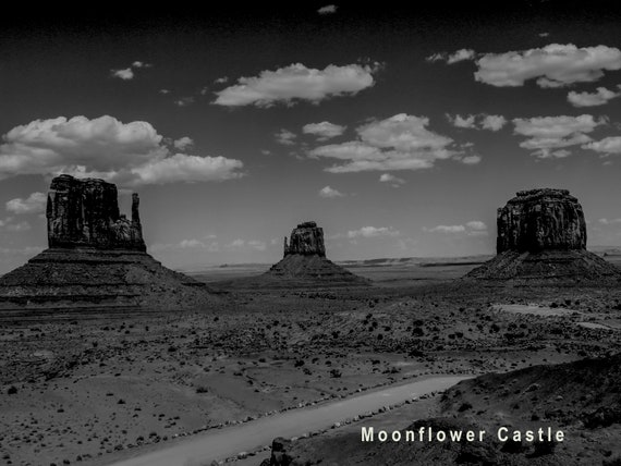 B/&W Black /& White Monument Valley AZ// UT Photo Picture Print 4X6,5X7,8X10,8.5X11