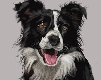 Border Collie, Print