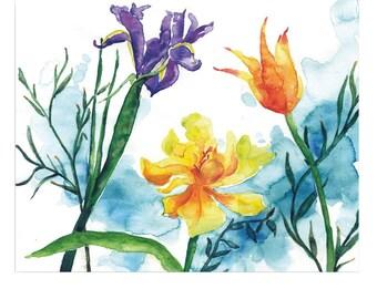 Tulip Grace Iris Pride Original Watercolor Painting