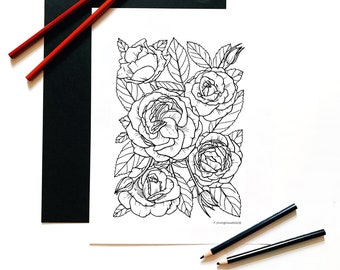 Roses Floral Coloring Page for Adults, Roses Botanical Art Instant Download, Rose Flowers Coloring Page