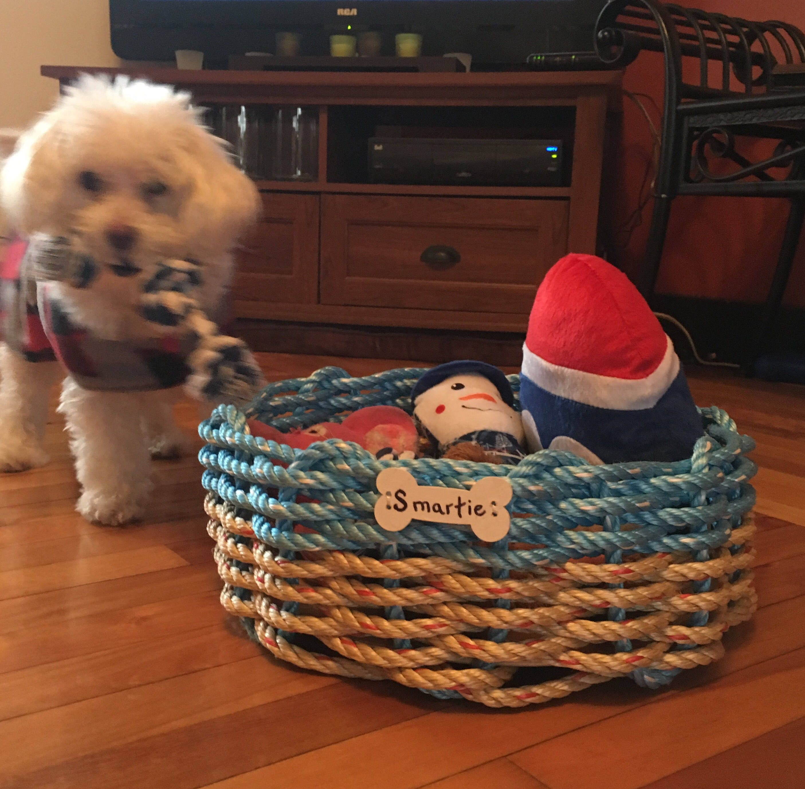 a6ceba3ee8d5 Personalized Dog Toy Basket