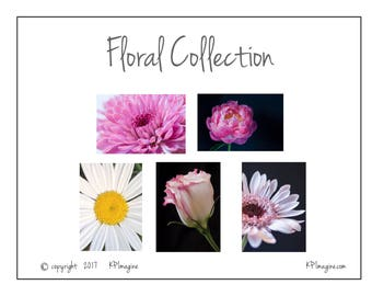 Set of five floral photo note cards, blank for any occasion