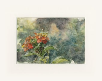 """5x7 Limited Edition Print of """"Warm Bouquet"""""""