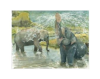 "8.5x11 Limited Edition Print of ""Elephant Bath Time"""
