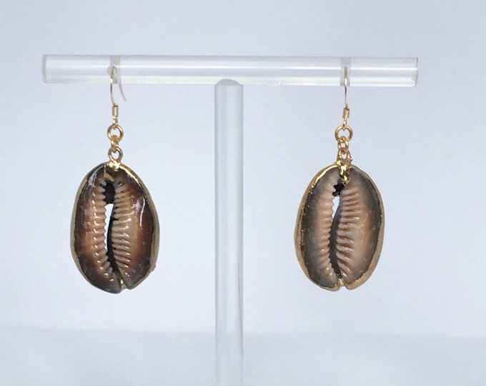 Shell earrings - Earwires gold filled 14 carats