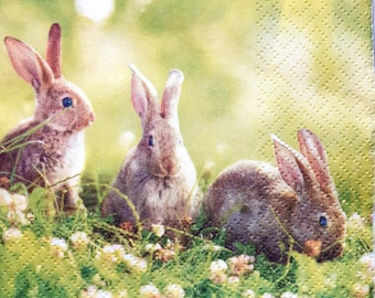 ACEO Limited Edition-Cottontails in the clovers Rabbits Cute bunny Gift idea