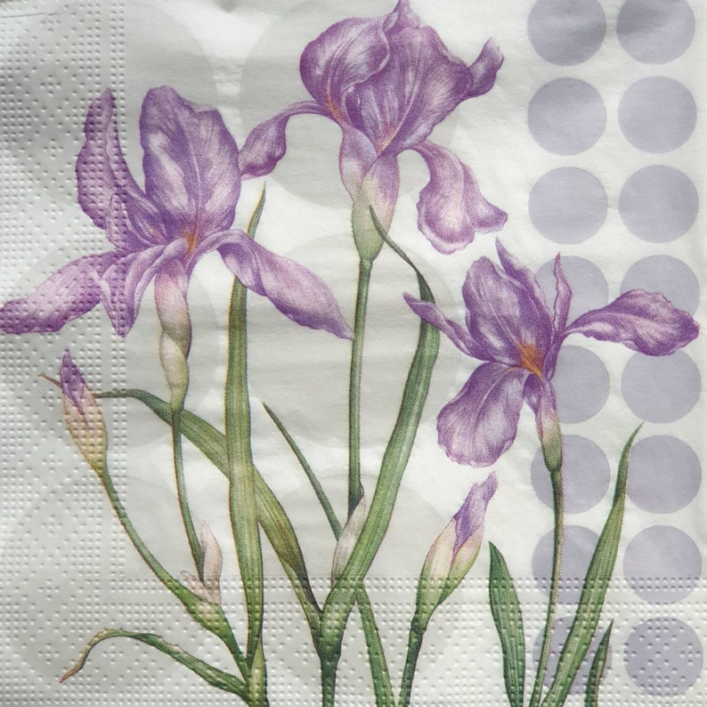 4 x Single Paper Napkins Herbs for Decoupage and Crafting Table 16
