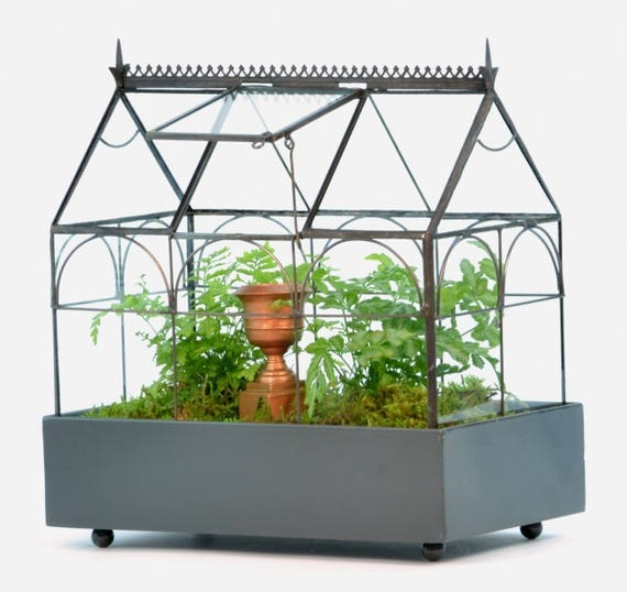 H Potter Plant Terrarium Container Large Glass Terrarium Etsy
