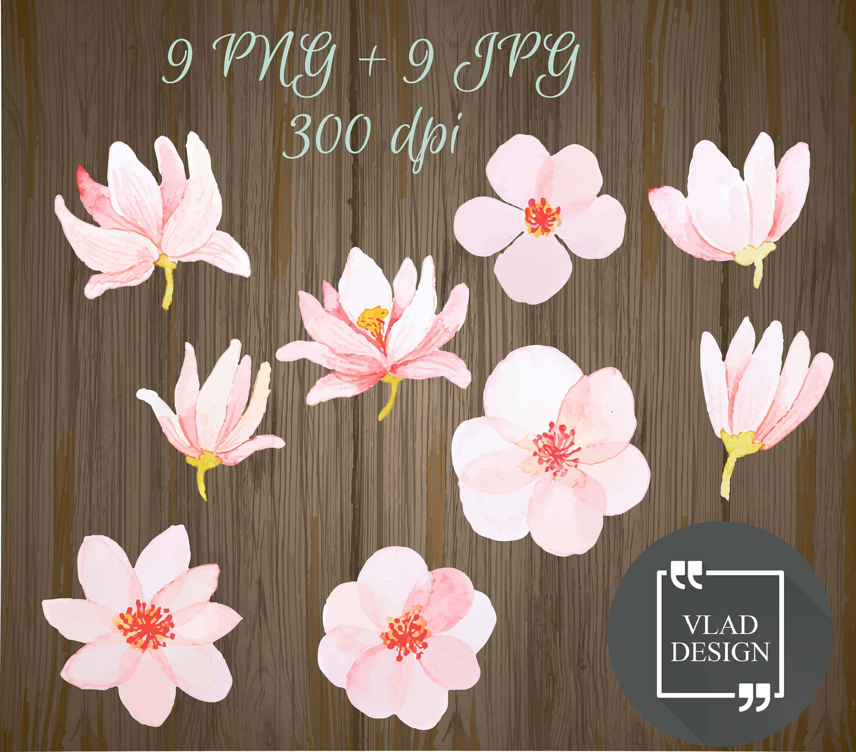 9 Pink Flowers Elements Spring Clipart Digital Spring Etsy