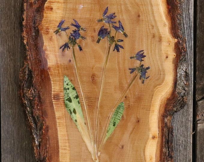 Bouquet on a Live edge wood board.  Real Idaho Shooting Star Wildflowers. Chunky Bark Live Edge wood - Wildflower Art!