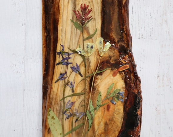 Botanical Wildflower Art! Real Wildflowers from Idaho and resin on live edge pine wood to hang on your wall. Give flowers that last forever.