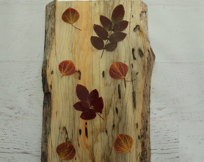 Fall Foliage Wildflower Epoxy Resin Art! Aspen and Holly Leaves from Idaho on live edge pine wood to hang on your wall. Country Chic look