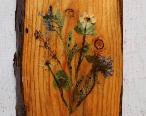 Wildflower Art! Real Wildflowers from Idaho on live edge pine wood to hang on your wall. Botanical wall hanging for the Country Chic look.