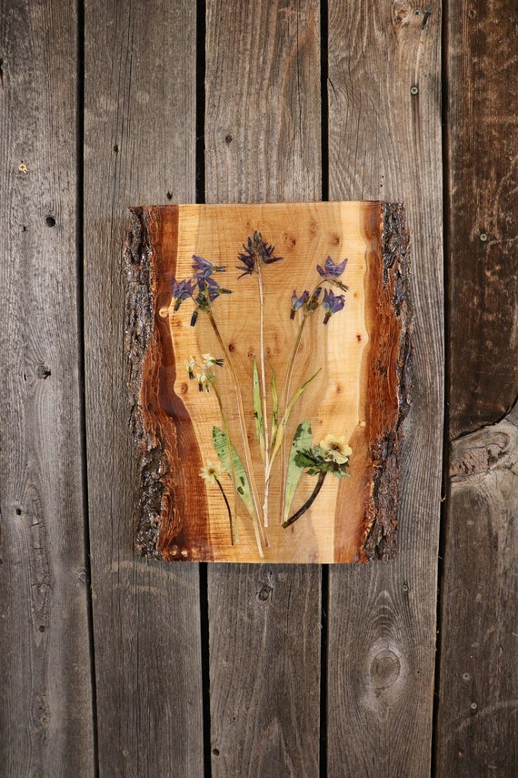 Live Edge Wildflower Art Wall Hanging! Real Wildflowers from Idaho on live edge wood to hang on your wall. Shooting Star & Camas Lily