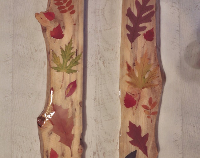 Fall Foliage Epoxy Resin Art! Real Leaves from Idaho on live edge pine wood to hang on your wall. Bring the outdoors inside.