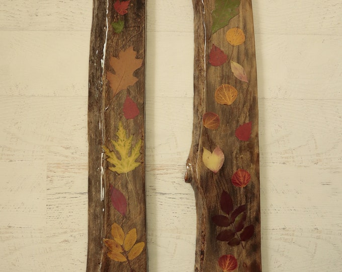 Autumn Leaves, Resin & wood Art! Real Leaves from Idaho on live edge pine to hang on your wall.