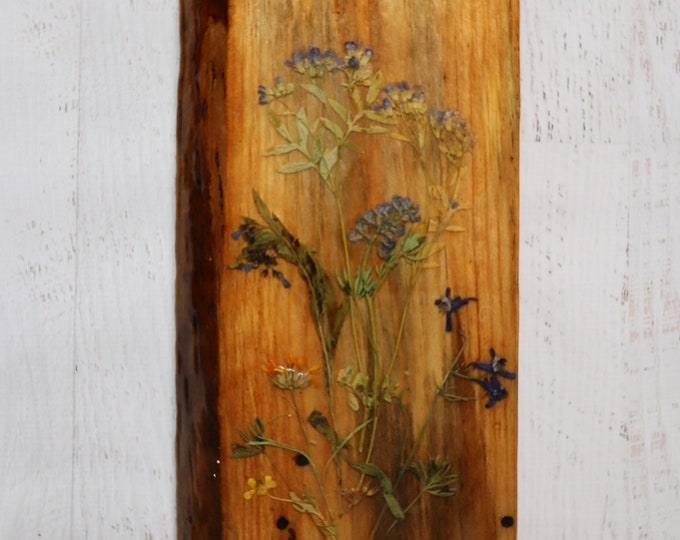 Actual Wildflowers from Idaho on live edge pine wood to hang on your wall. Country Chic Live Edge Botanical Art!
