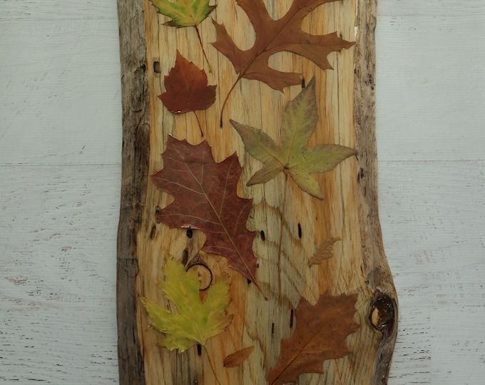 Fall Foliage Wildflower Epoxy Resin Art! Real Leaves from Idaho on live edge pine wood to hang on your wall. Country Chic look