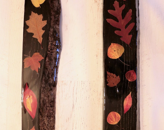 Fall Foliage Epoxy Resin Art! Real Leaves from Idaho on live edge pine wood to hang on your wall. Black Stain makes the colorful leaves pop!