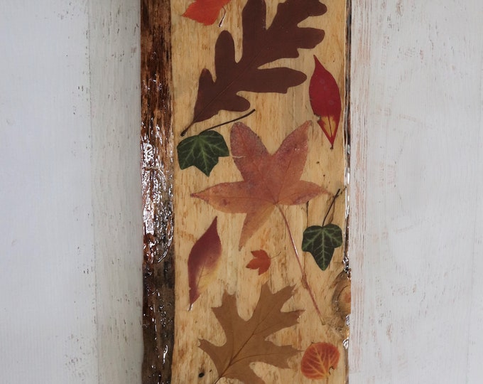 Fall Foliage Wildflower Epoxy Resin Art! Real Leaves from Idaho on live edge pine wood to hang on your wall. Bring the outdoors inside.