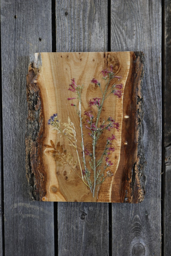 Live Edge Wildflower Art! Real Wildflowers from Idaho on live edge wood to hang on your wall.