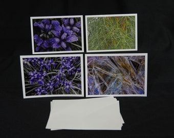 Greeting Cards, Pattern, Form, & Texture in Nature - Various I, Nature Photography, Photography Greeting Cards