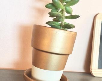 Custom colorblock flower pot