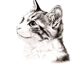 Custom cat portrait commission cat painting pencil drawing of cat memorial cat portrait gift idea