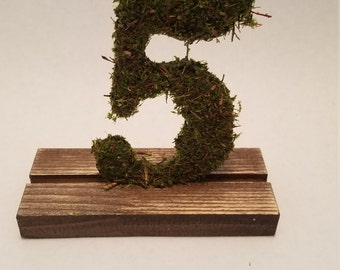 Moss Table Numbers (1-12)