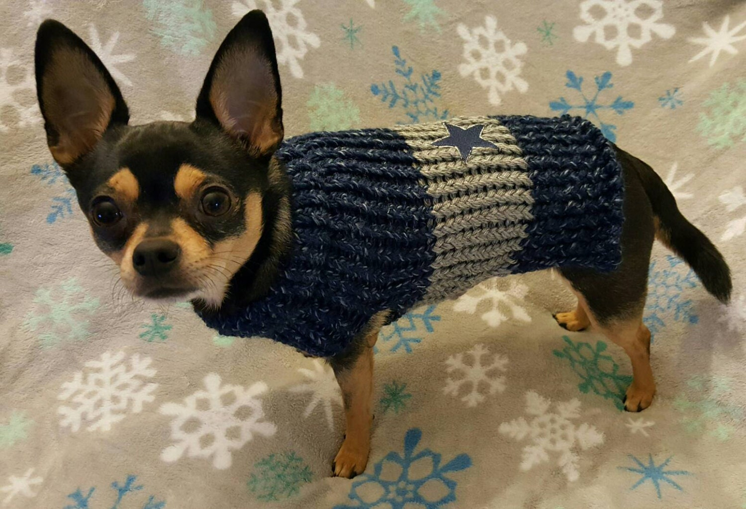 buy online 86322 be94b Dallas Cowboys color Dog Sweater,NFL dog,cat,hand knitted,Christmas dog  gift,Holiday sweater,Trendy cute dog cat clothes,Winter warm