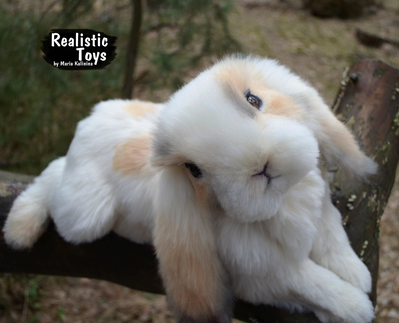 Puffy Stuffed Rabbit Realistic Life Size Replica Pet Portrait Etsy