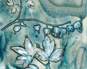 Original wet cyanotype print of a bleeding heart flower and leaves from Burton Agnes Hall walled garden